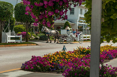 Photograph - Carriage Ride by Gene Sherrill