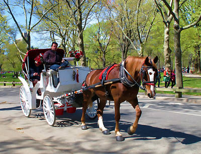 Print featuring the photograph Carriage Ride In Central Park by Eleanor Abramson