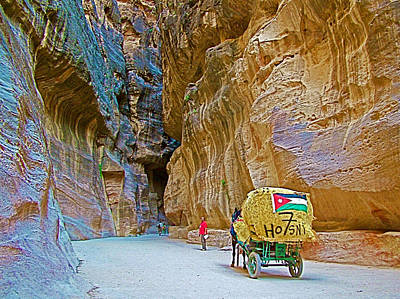Petra Digital Art - Carriage With A Jordanian Flag In Gorge In Petra-jordan by Ruth Hager