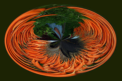 Photograph - Carrots 1 by Jim Baker