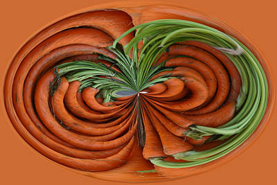 Photograph - Carrots 2 by Jim Baker