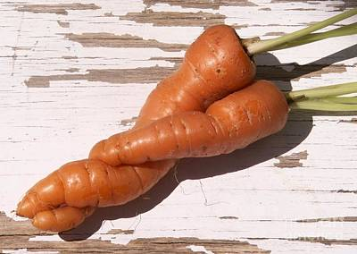 Photograph - Carrots In Love by Valerie Reeves