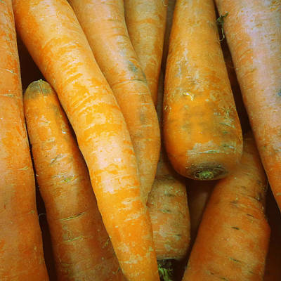 Photograph - Carrots by Joseph Skompski