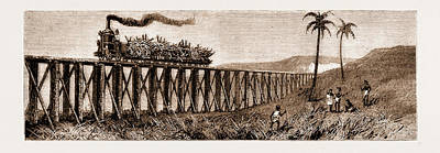 Plantation Drawing - Carrying Sugar Cane On The Pioneer Plantation by Litz Collection