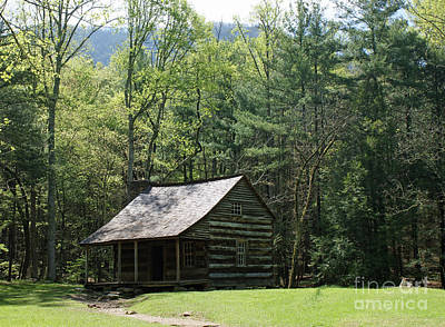 Carter Shield Cabin In Cades Cove Art Print by Roger Potts