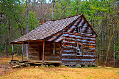 Carter Shields Cabin 2 Art Print by Wild Expressions Photography
