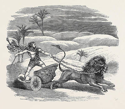 Carter Drawing - Carters Lion Chariot Feat by English School