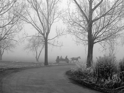 Photograph - Carutza In Fog Monochrome by Tamyra Crossley