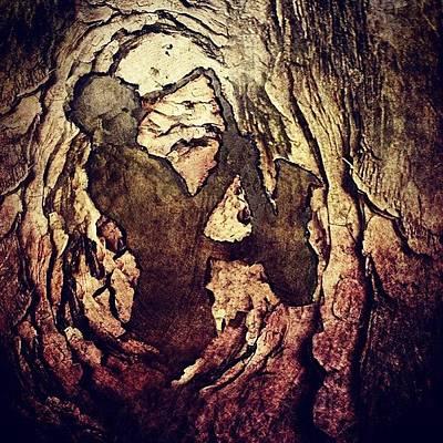 Jazz Photograph - Carved Jazzer #jazz #tree #carved #wood by Pedro Ribeiro