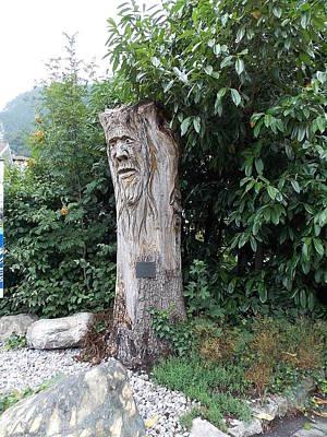 Carved Tree Art Print