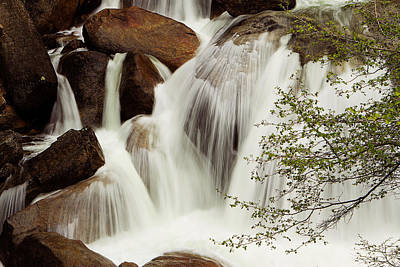 Photograph - Cascade Falls by Robert Woodward