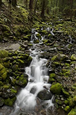 Photograph - Cascade by Heather Applegate