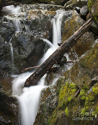 Photograph - Cascade by Idaho Scenic Images Linda Lantzy