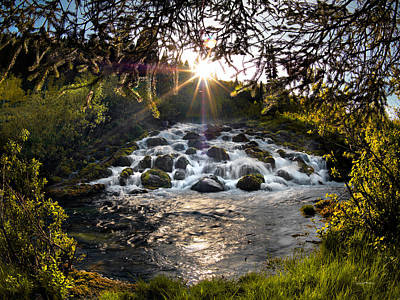 Photograph - Cascade In Evening Sun by Leland D Howard