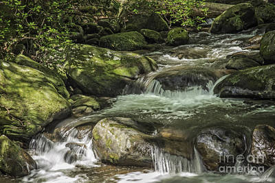 Photograph - Cascade-jones Gap by David Waldrop