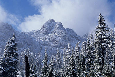 Cascade Mountains Snoqualmie National Forest Photograph - Cascade Mountains by Jim Corwin