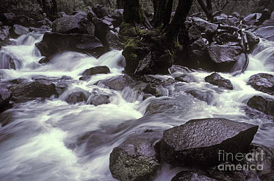Photograph - Cascade by Ron Sanford