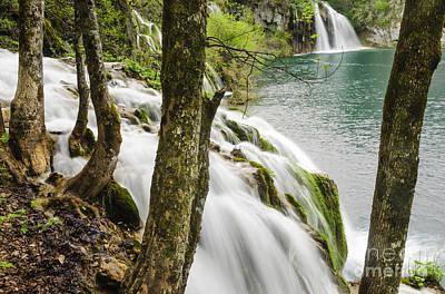 Waterfalls Photograph - Cascade Through The Woods by Oscar Gutierrez