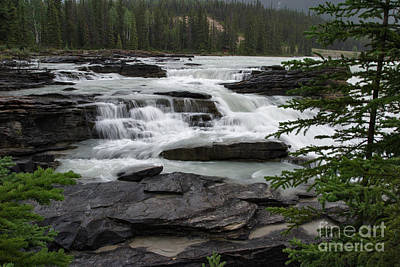 Photograph - Cascades Above Athabasca Falls by Charles Kozierok