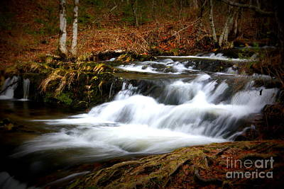 Photograph - Cascades by Cynthia Mask