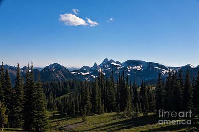 Photograph - Cascades Near Mt Ranier by Ronald Lutz