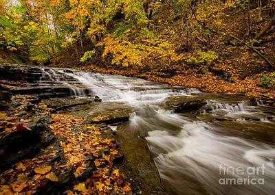 Photograph - Cascadilla Gorge Trail by Brad Marzolf Photography