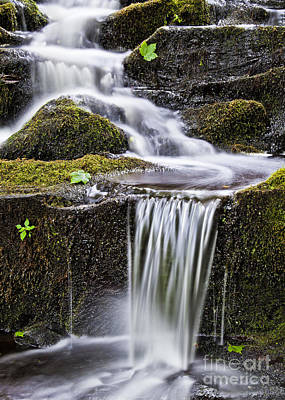 Photograph - Cascading Brook by Alan L Graham