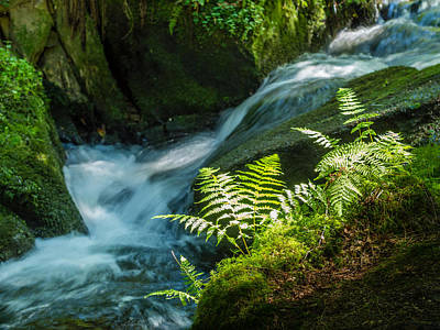 Photograph - Cascading Creek - Silberbachtal No 8 by Martin Liebermann