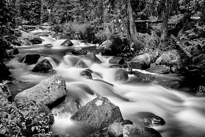Photograph - Cascading Rocky Mountain Forest Creek Bw by James BO Insogna