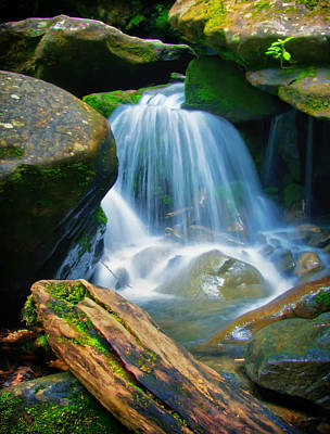 Photograph - Cascading Stream by Carolyn Derstine