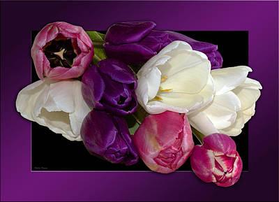 Tulip Pics Photograph - Cascading Tulips by Phyllis Denton