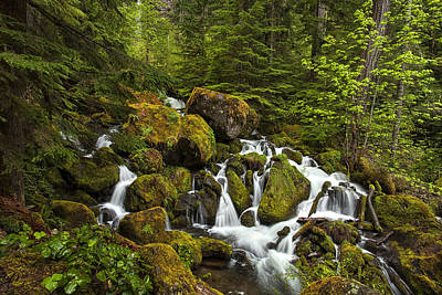 Tranquil Photograph - Cascading Water by Andrew Soundarajan