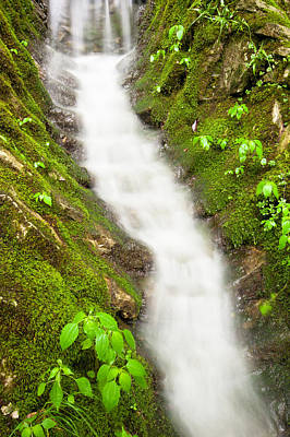 Photograph - Cascading Waters by Gregory Ballos