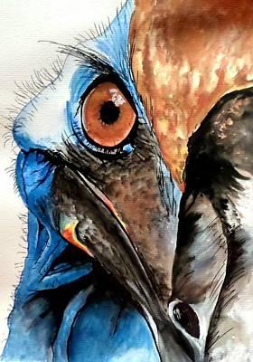 Cassowary No 2 Art Print