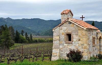 Photograph - Castello Di Amorosa Vineyard by Gina Savage