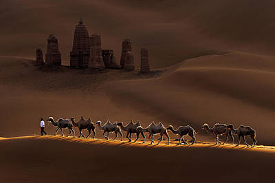 Sand Dune Photograph - Castle And Camels by Mei Xu
