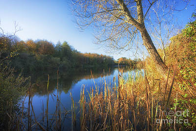 Photograph - Castle Espie by Jim Orr