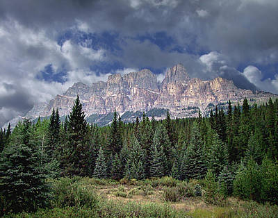 Photograph - Castle Mountain In Autumn by George Cousins