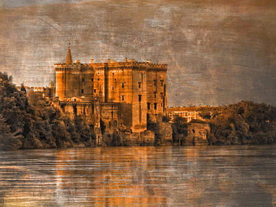 Photograph - Castle On The Rhone by Bob Coates