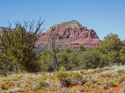 Photograph - Castle Rock Sedona 2 by Marianne Campolongo