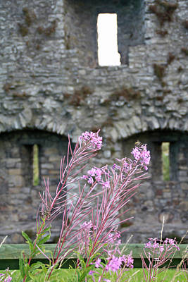 Photograph - Castle Trim by Pat Moore