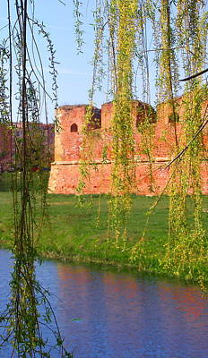 Photograph - Castle Wall Through The Willows by Tamyra Crossley