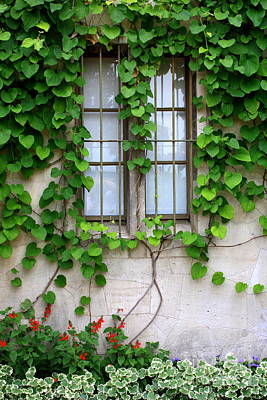 Photograph - Castle Window In Germany by Carol Groenen