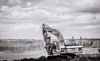 Artist Working Photograph - Cat 320b Black And White by Alanna DPhoto