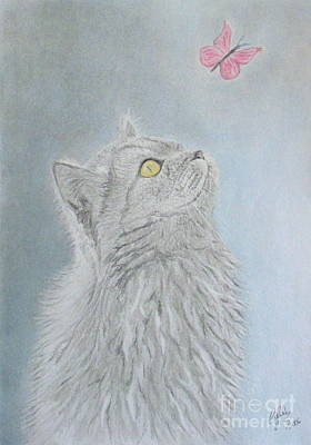 Wall Art - Drawing - Cat And Butterfly by Cybele Chaves
