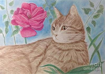 Quadro Mixed Media - Cat And Flower by Cybele Chaves