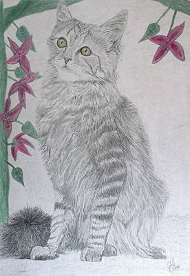 Wall Art - Drawing - Cat And Flowers by Cybele Chaves
