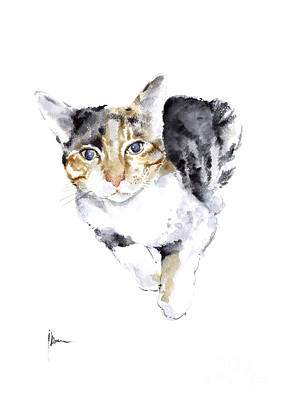 Cat Art Print Watercolor Painting Cats Ideas Artwork Original by Joanna Szmerdt