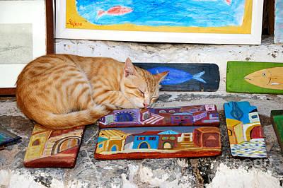 Paint Photograph - Artist Cat by George Atsametakis