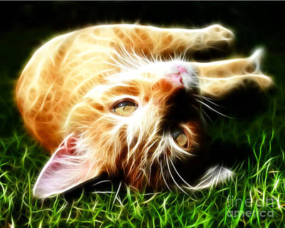 Cat At Play Art Print by Jo Collins